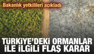 Türkiye'deki tüm ormanlar için son dakika 'hayat koridoru' kararı