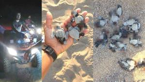 Yasağa Rağmen ATV Araçları ile Gece Sahile Giren 2 Kişi Caretta Caretta Yuvalarını Ezdi: 16 Yavru Öldü