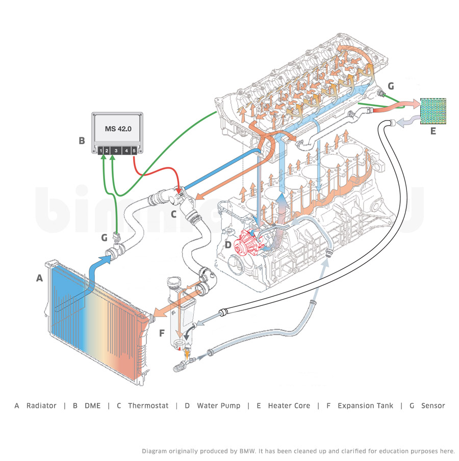medium resolution of bmw x5 cooling system diagram bmw e39 engine diagram bmw 325i bmw x5 cooling system diagram bmw e39 engine diagram bmw 325i cooling