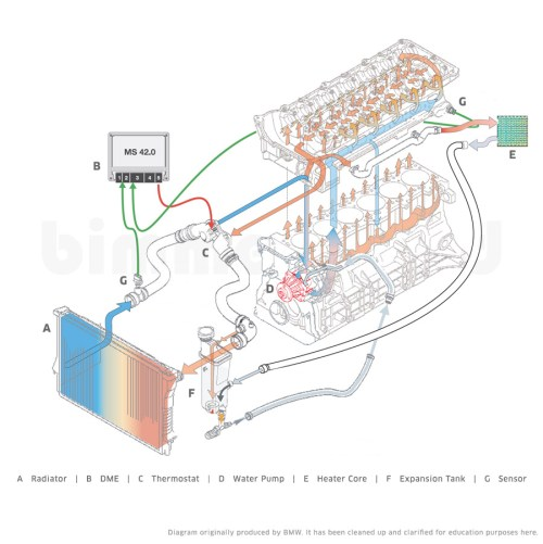 small resolution of bmw x5 cooling system diagram bmw e39 engine diagram bmw 325i bmw x5 cooling system diagram bmw e39 engine diagram bmw 325i cooling