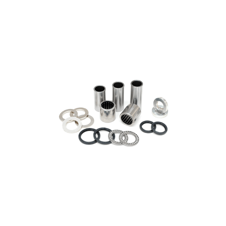 Kit revisione forcellone Beta RR 125/200/250/300 2T 2013