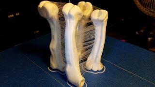 ragnatele stampa 3D