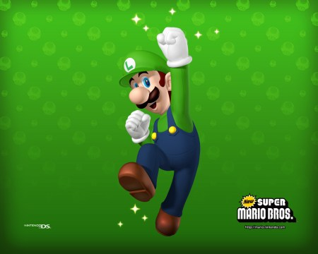 New Super Mario Brothers Luigi (Marios Brother)