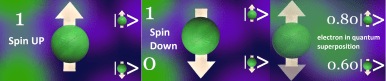Spin UP Spin DOWN electron in quantum superposition