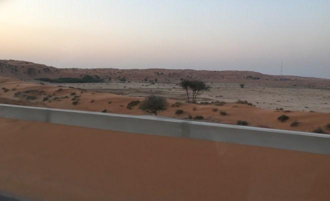 Dessert dunes