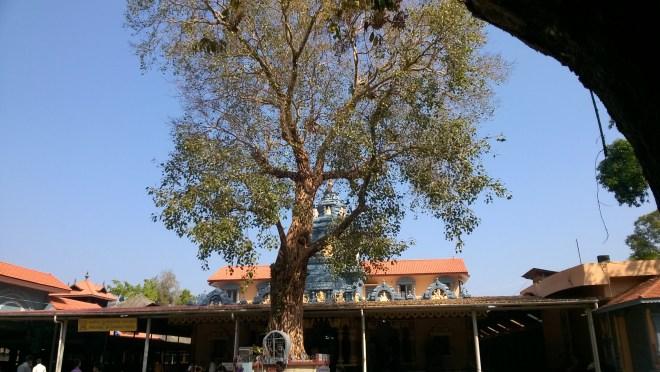 Shri Vinayaka Temple, Anegudde