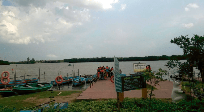 Boating facilities at Pichavaram Mangroves