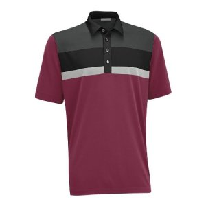 Ashworth_polo