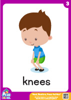 Head Shoulders Knees And Moo - knees