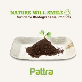 Pattra Biodegradable Post-min