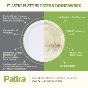 Pattra FB 6-min