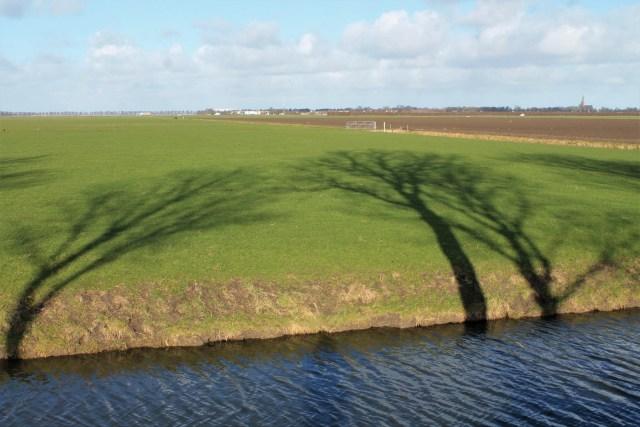 Beemster in Beeld - Bomenschaduw langs Volgerweg