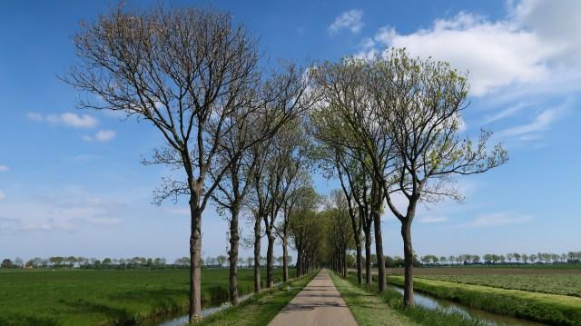 Beemster in Beeld - Vrouwenweg
