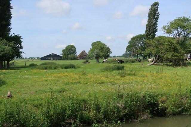 Beemster in Beeld - Doorkijkje naar de boerderij Veeteeltlaan 1