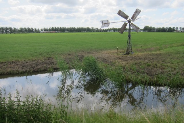 Beemster in Beeld - Zomer