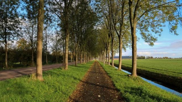 Beemster in Beeld - Middenweg t/s N244 en Volgerweg