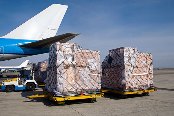 BinShoelan Logistics & Aviation Services, Freight Forwarding