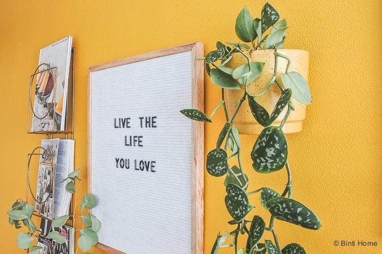 Wildernis plantenpot collectie 'Nelis ©BintiHome-7