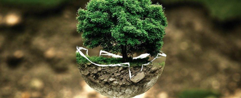 Pressing écologique