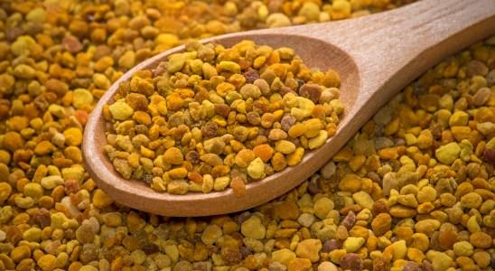 Pollen bio pour miel
