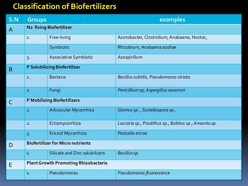 Examples Of Biofertilizers