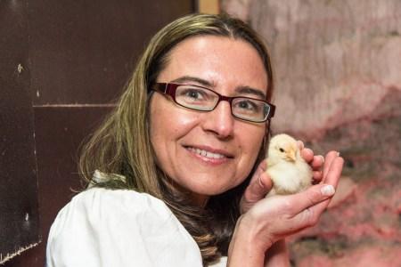 Karin Suschetz