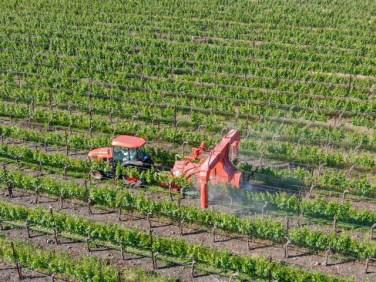 ブドウ畑に機械で農薬散布
