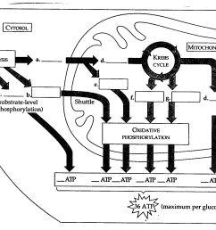 diagram [ 2158 x 1357 Pixel ]