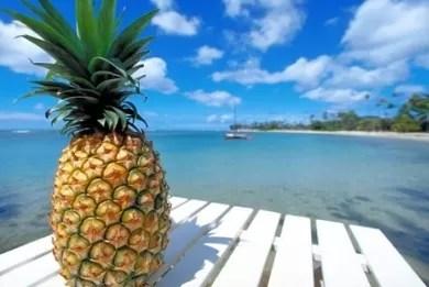 ananas-froyto-Υγεία-Θεραπειά