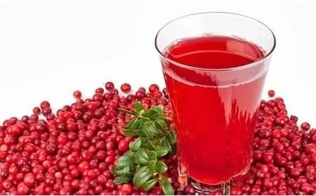article_show_image_Cranberries-kai-ourolimoxeis