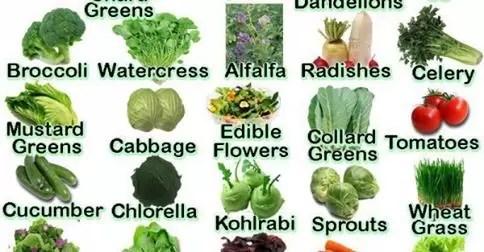 ο πόρος της USDA για τα τρόφιμα