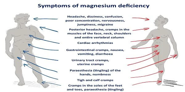 magnesium-deficiency-these-are-the-symptoms