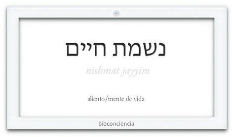 espiritualidad definicion de bioconciencia