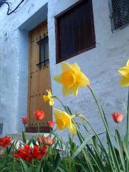 casa-enric-entrada-floral-copia