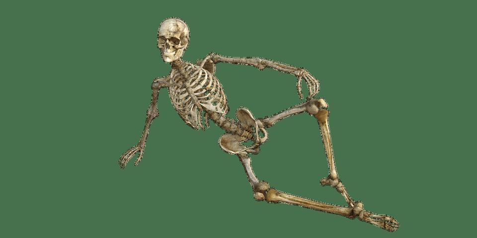 skeleton-1561177_960_720.png