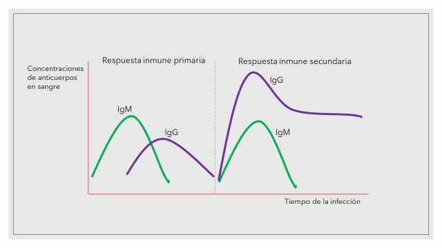 Test diagnóstico: coronavirus SARS CoV-2 1