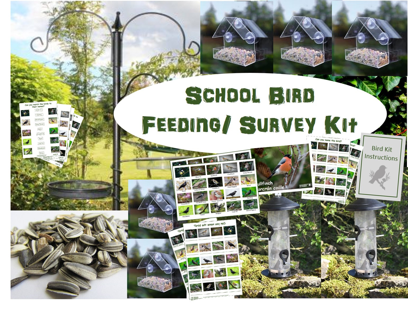 School Bird Feeding Survey Kit