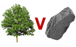 tree representing biodiversity versus coal representing carbon
