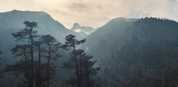 Landscape photo of Nepal forest with hills receding in background