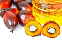Los aranceles en India, las prohibiciones de la Unión Europea para su uso como combustibles renovables y el aumento de la oferta están produciendo un decaimiento en el sector del aceite de palma.