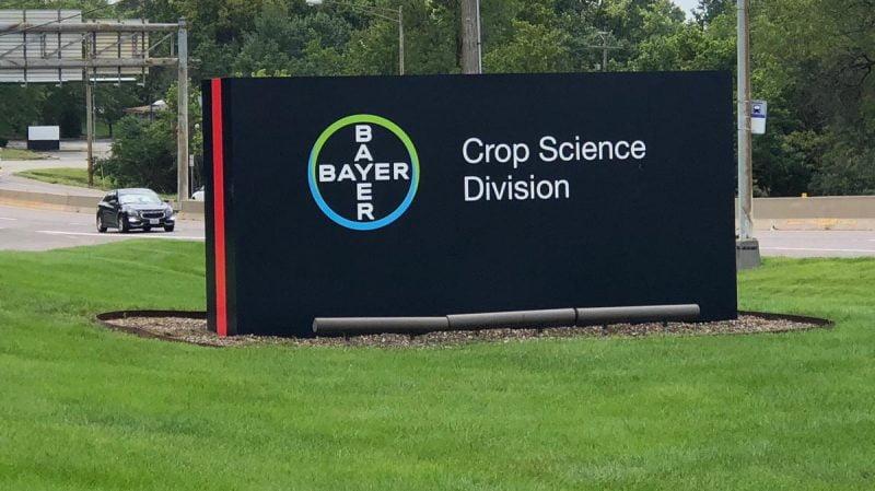 Bayer insinúa planes de proteínas alternativas