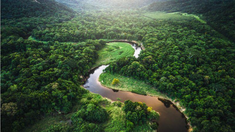 El BID aportará fondos para impulsar la bioeconomía del Amazonas