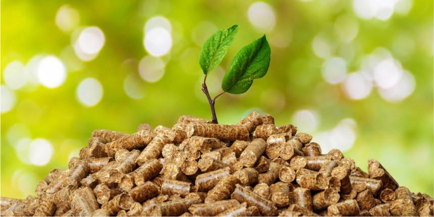 Reino Unido: la industria de biomasa propone compromisos de descarbonización