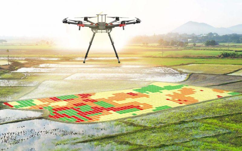 Especialistas de distintos sectores analizaron el impacto de las tecnologías en el agro
