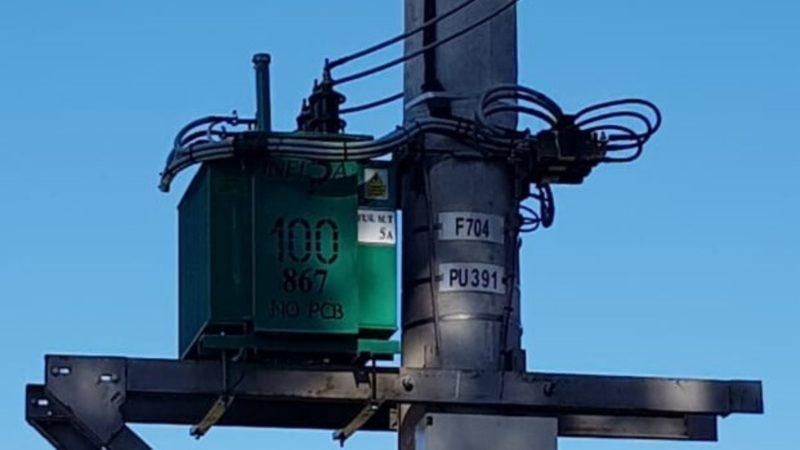 Ya funciona en Tandil un transformador cargado con aceite ecológico