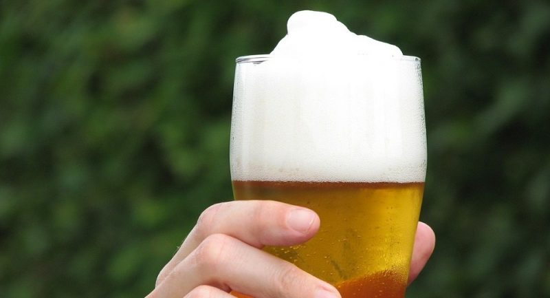 Desarrollan levaduras transgénicas que eviten el envejecimiento de la cerveza