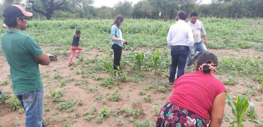 El IICA se suma a los esfuerzos de Argentina para enfrentar la inseguridad alimentaria y los problemas sanitarios en comunidades wichis de Salta