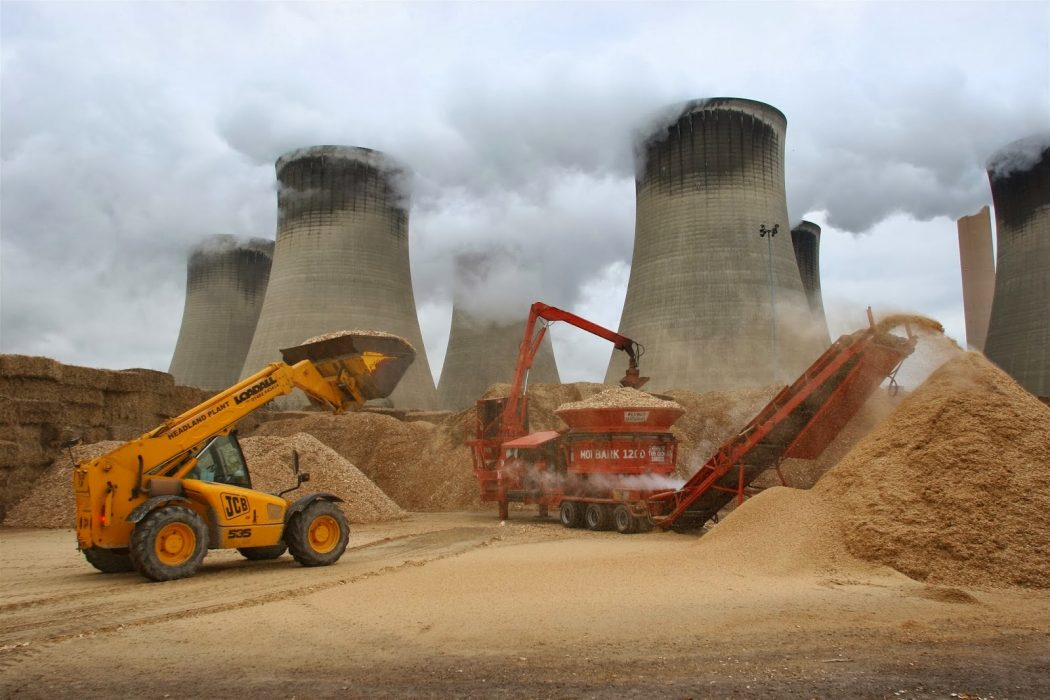 Japón: un nicho atractivo para el mercado de pellets de biomasa