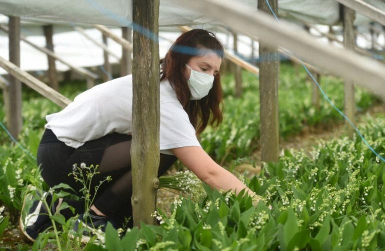 La pandemia fomenta un nuevo aprecio por quienes alimentan el mundo