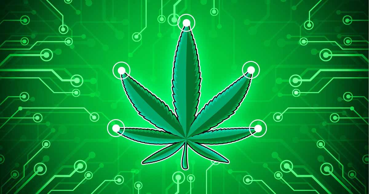 El cannabis abre paso a las nuevas modalidades de compra